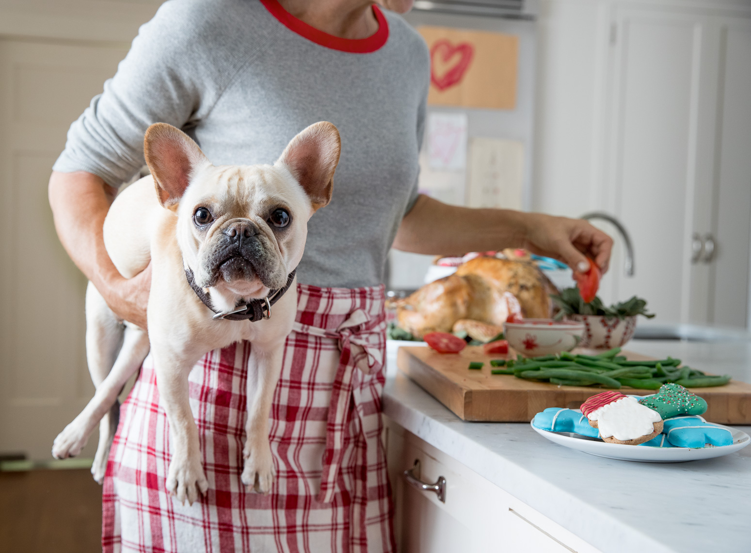 P87_SR100589_PS_20160908_Holiday-Dog-Feasting-1_08683